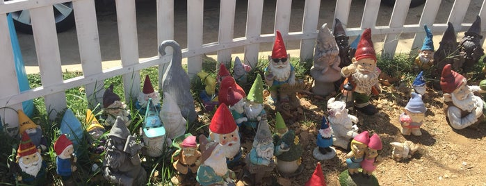 Gnome Cones is one of Texas.