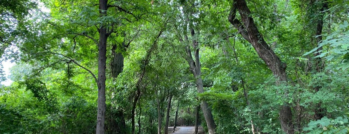 Timber Creek Trail is one of Walkabout Lewisville.