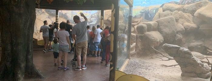 Zoológico do Aquário de São Paulo is one of Lugares Já Visitados.