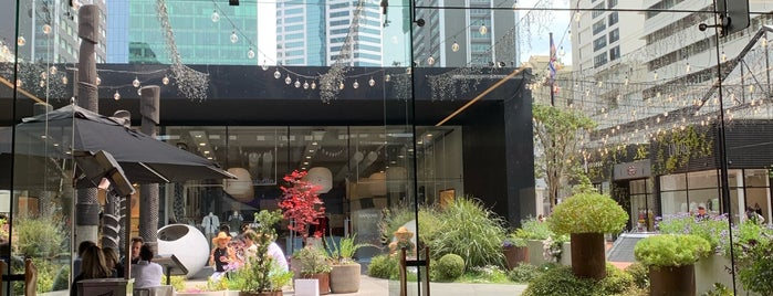 Allbirds is one of Auckland List.