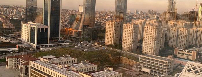 Sheraton Grand İstanbul Ataşehir is one of Halil : понравившиеся места.