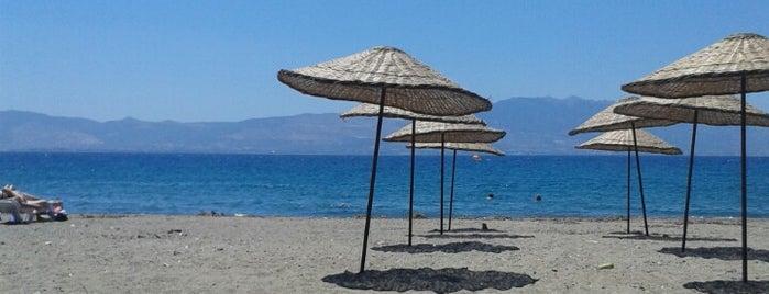 Fener Beach is one of themaraton.