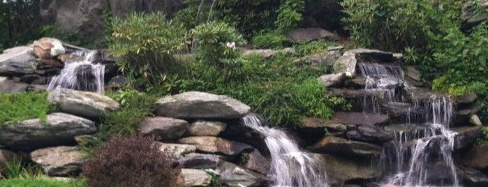 The Pool at Echota on the Ridge is one of Posti che sono piaciuti a Audrey.