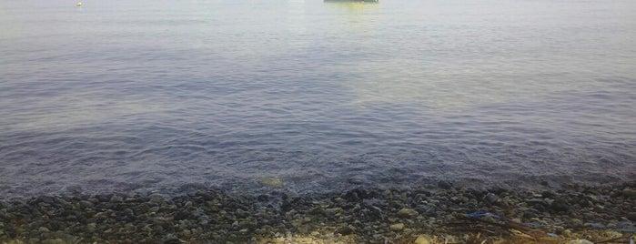 Dassia Beach Corfu is one of Corfu, Greece.