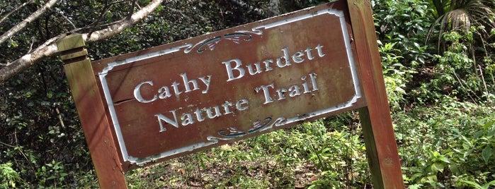 Cathy Burdett Nature Trail is one of Todd : понравившиеся места.