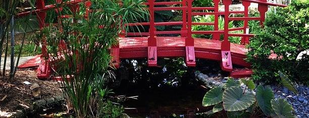 Miami Beach Botanical Garden is one of Miami.
