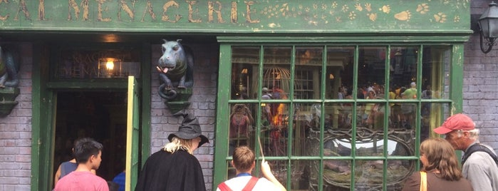 Magical Menagerie™ is one of HARRY POTTER WORLD.
