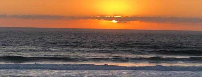 Praia do Guincho is one of Ali 님이 좋아한 장소.