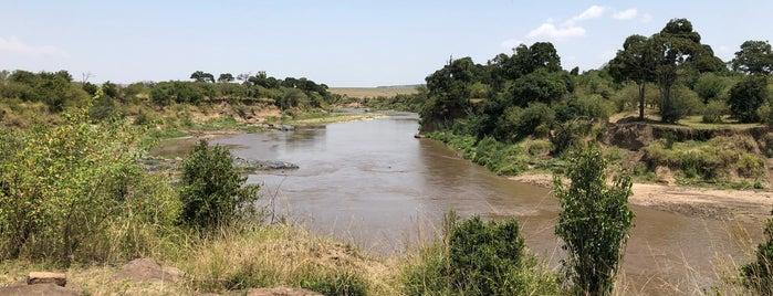 Masai Mara National Reserve Sekenani Gate is one of Ali 님이 좋아한 장소.
