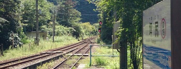 坪尻駅 (D19) is one of 撮り鉄スポット.