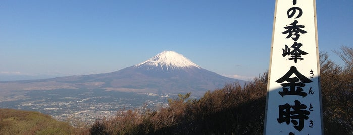 Mt. Kintoki is one of Joshpan.