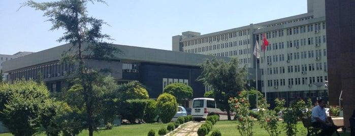 T.C. Maliye Bakanlığı is one of Orte, die Büşra gefallen.