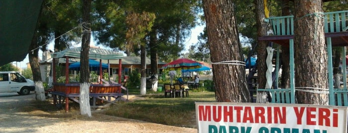 Muhtarin Yeri Park Orman Cay Bahcesi is one of Posti salvati di Ahmet.