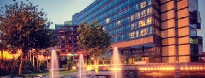 Jumeirah Creekside Hotel is one of Lieux qui ont plu à Carlos.