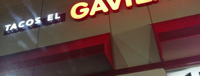 Tacos El GAVILAN is one of Mayleaさんの保存済みスポット.
