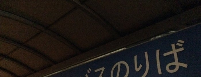 海老名駅東口 高速バス乗り場 is one of 海老名・綾瀬・座間・厚木.