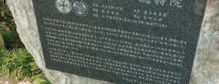 高野山真言宗 海老山満蔵寺総持院 is one of 海老名・綾瀬・座間・厚木.