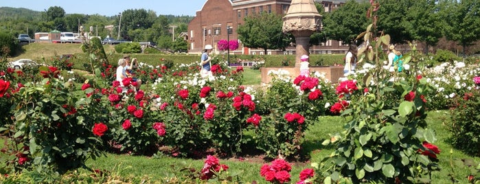 Rose Garden is one of Up North.
