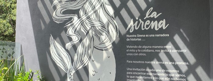 Starbucks is one of Locais curtidos por Ericka.
