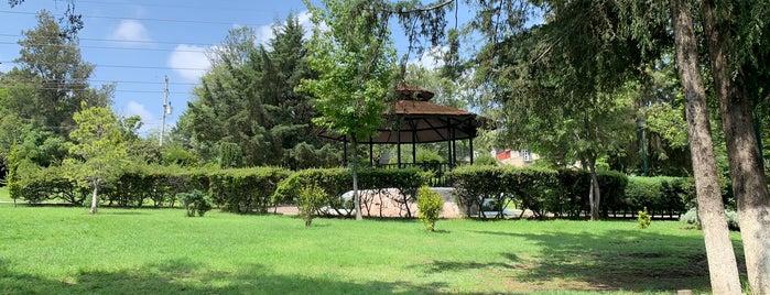 Parque Boulevard De La Luz Sur is one of Posti che sono piaciuti a Paco.