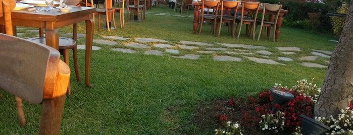Şazeli Cafe & Nargile is one of to do.