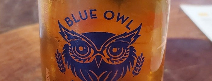 Blue Owl Brewing is one of BBQ Tour.