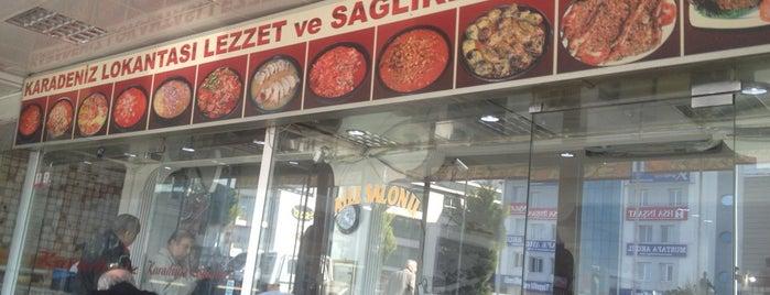 Karadeniz Hasan Usta is one of Posti che sono piaciuti a Oguzhan.