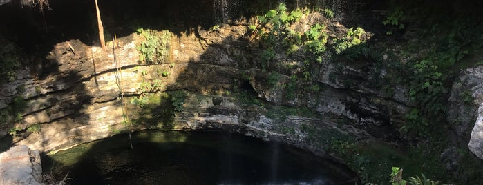 Cenote Saamal is one of Locais curtidos por Liz.