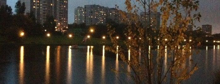 Мазиловский пруд is one of Вишенка : понравившиеся места.