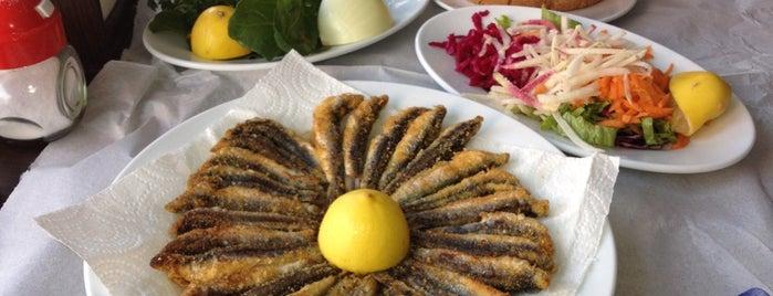Erbaylar Balık is one of Gidilecekler.