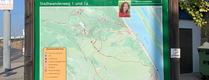 Stadtwanderweg 1a - Leopoldsberg is one of Best Of....
