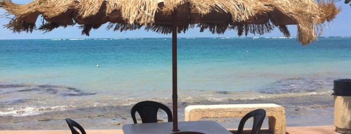 Costa Mia Restaurant is one of สถานที่ที่ Becky ถูกใจ.