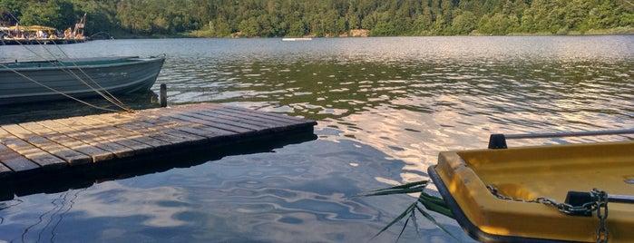 Lago Grande di Monticolo is one of All-time favorites in Italy.