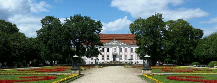 Schloss Friedrichsfelde is one of Emilio Alvarez's Liked Places.