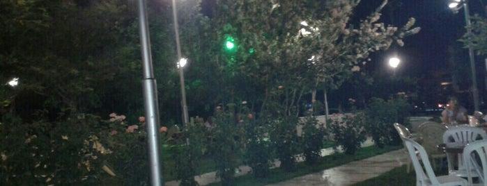 Çınarlı Parkı is one of Posti che sono piaciuti a Burçin.
