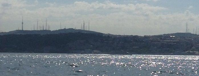 Kaptanlar Çay Bahçesi is one of İstanbul Yeme&İçme Rehberi - 5.