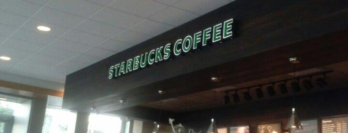 Starbucks is one of Tempat yang Disukai Trish.