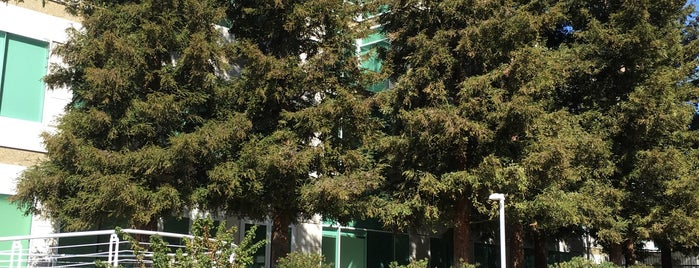 Steve Jobs Memorial is one of Bay Area.