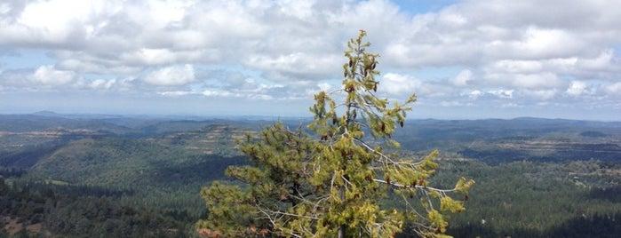 Arnold Rim Trail - trailhead at Sierra Nevada Logging Museum is one of Tempat yang Disukai Tara.