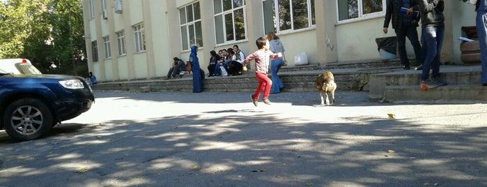Locais curtidos por Sercan