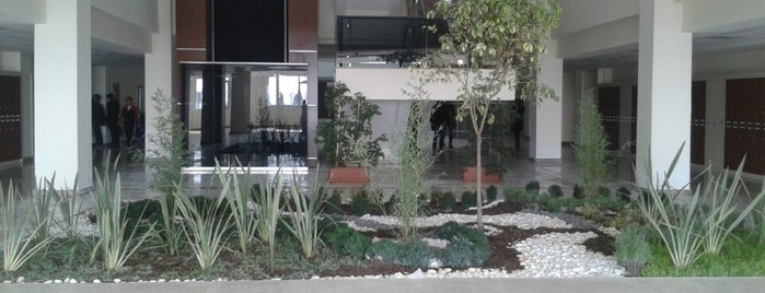 Zirve Üniversitesi Tıp Fakültesi is one of Zirve Üniversitesi.