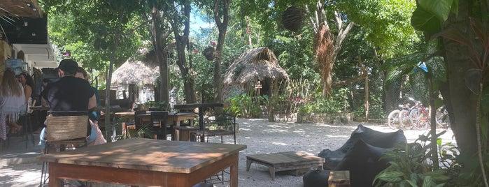 Liquido Y Sólido is one of México/ Yucatan.