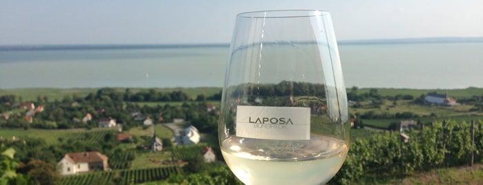 Laposa családi pincészet is one of Balaton.