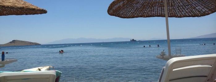Amfora Beach is one of สถานที่ที่ Emre ถูกใจ.