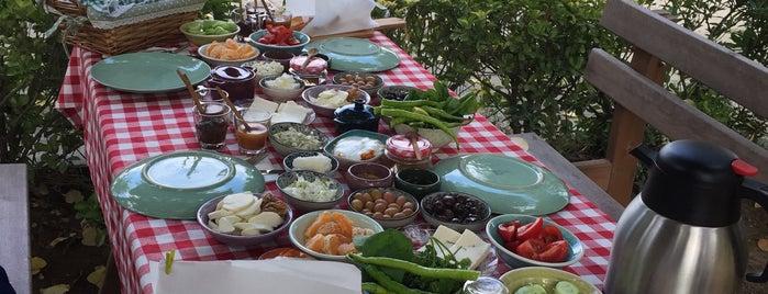 Nezihe Hanımın Bahçesi is one of Dene 2.