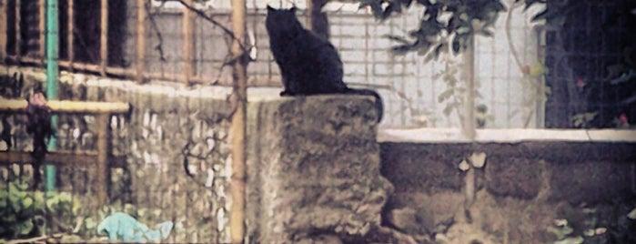 Καραβατιά is one of Γιάννενα 🇬🇷.