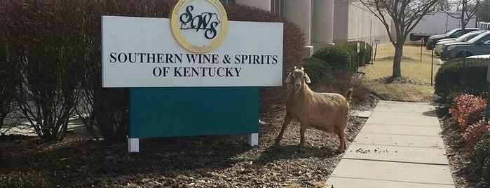 Southern Glazier Wine and Spirits is one of สถานที่ที่ Evan ถูกใจ.