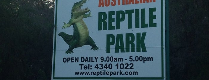 Australian Reptile Park is one of Eastern Australia Guide.