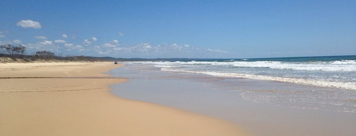 Fraser Island is one of Eastern Australia Guide.