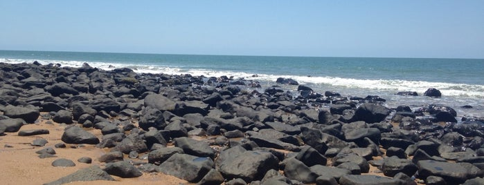 Mon Repos Turtle Rookery is one of Eastern Australia Guide.